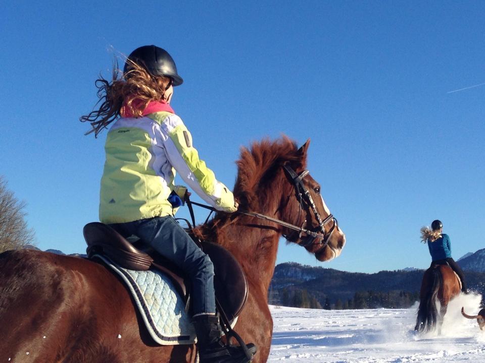 Reiten auf der Pony- und Pferderanch Weissensee