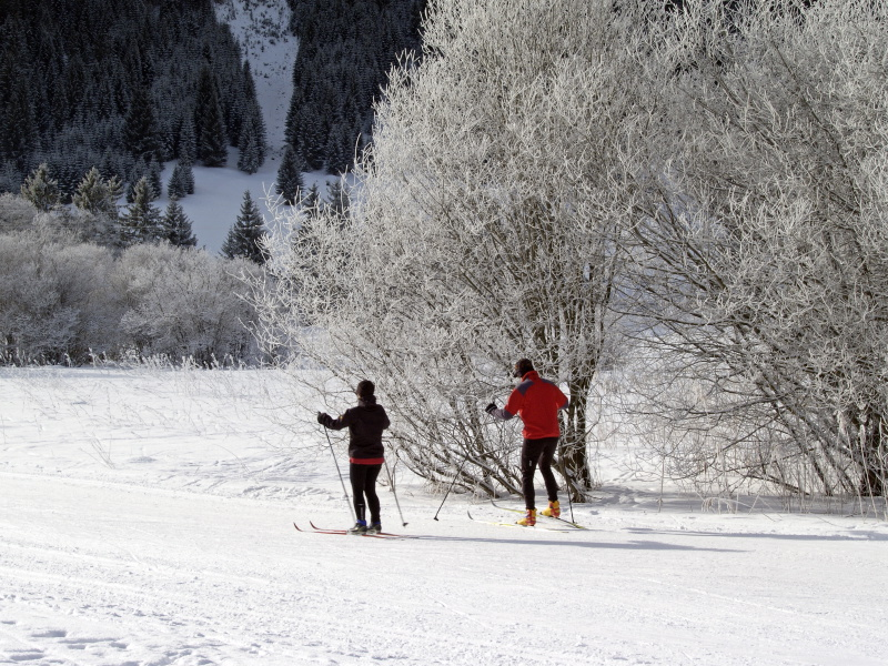 Cross-country ski in the Allgoi